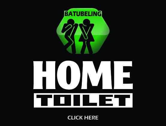 Home Toilet